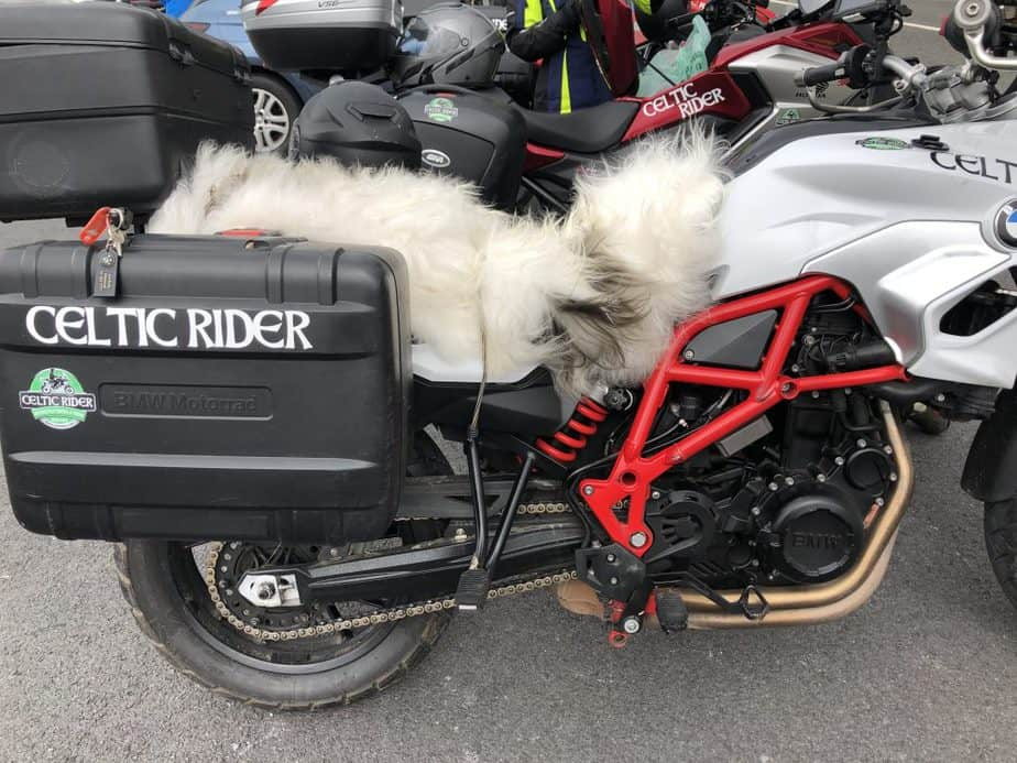 A BMWF700GS with a new sheepskin seat
